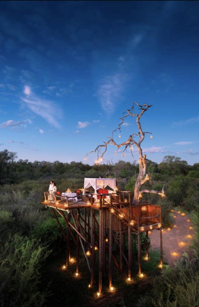 Zu sehen ist ein Pärchen auf einer Aussichtsplattform im südlichen Afrika. Alles ist romantisch beleuchtet.