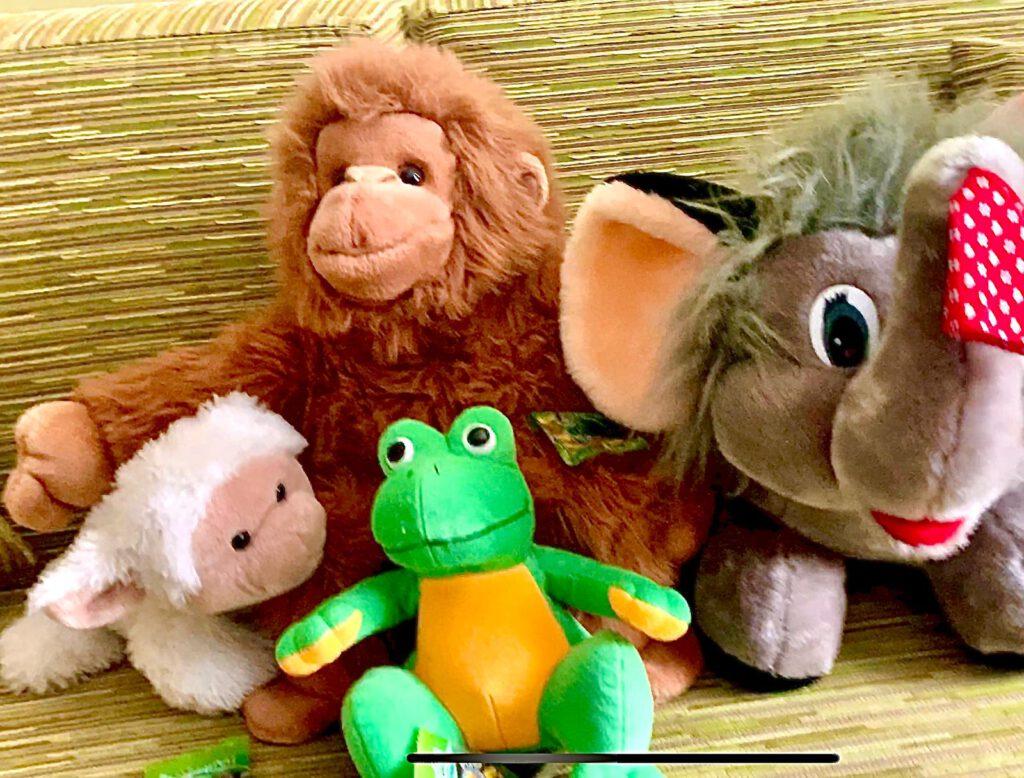 Zu sehen sind verschiedene Plüschtiere, z.B. ein Frosch, ein Elefant und ein Affe.