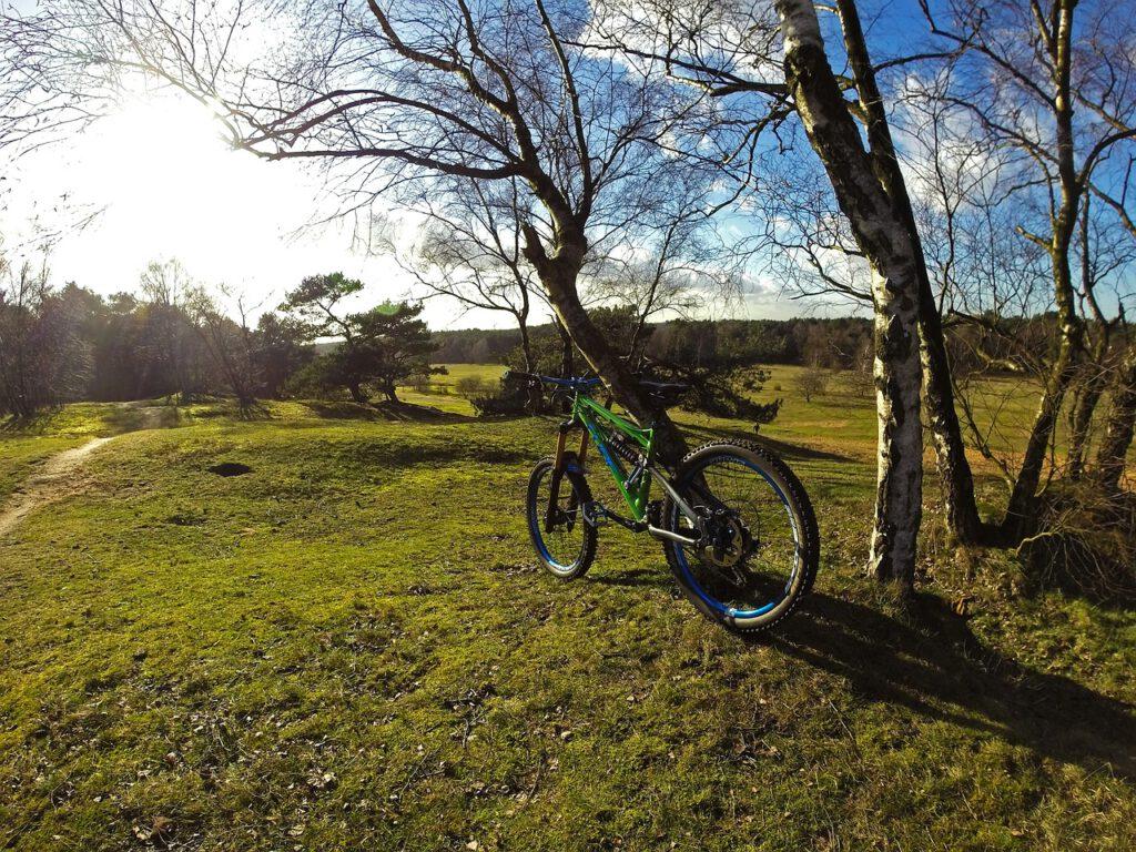 Zu sehen ist ein Mountainbike in einer grünen Landschaft.