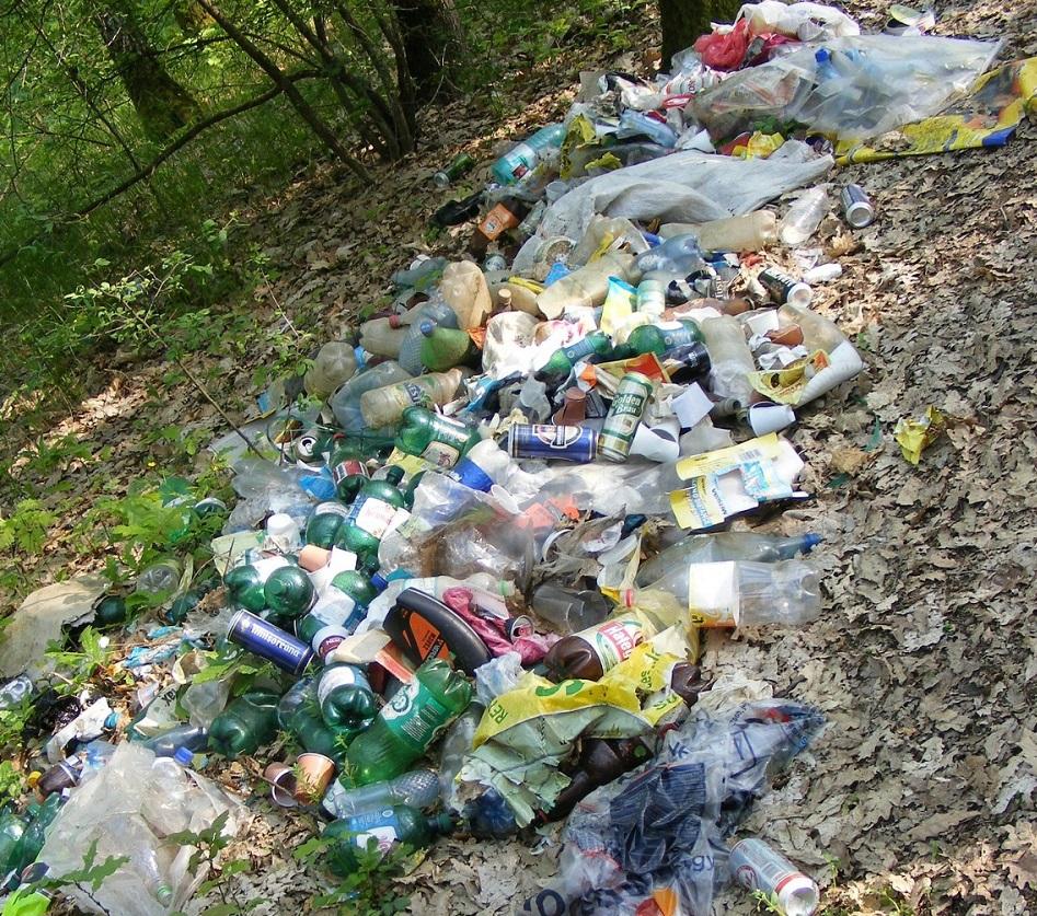 Zu sehen ist Müll, vor allem Plastik, im Wald.